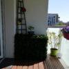 cache clim feuillage sur balcon belle deco